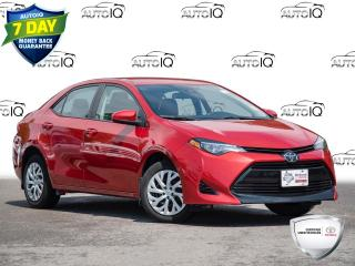 Used 2017 Toyota Corolla LE Parking Camera | One Owner | Low KM for sale in Welland, ON