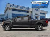 2021 Ford F-150 XLT  - $423 B/W