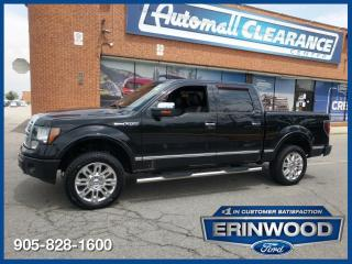 Used 2010 Ford F-150 PLATINUM for sale in Mississauga, ON