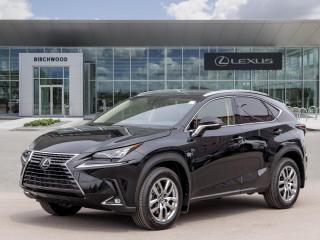 New 2021 Lexus NX 300 Luxury for sale in Winnipeg, MB