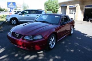 Used 2004 Ford Mustang 40th Anniversary for sale in Nepean, ON