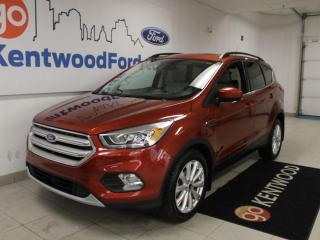 Used 2019 Ford Escape SEL FWD   Adaptive Cruise   Vista Roof   Lane Keeping for sale in Edmonton, AB