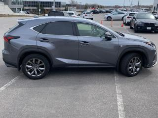 Used 2020 Lexus NX 300 F SPORT 1  LEATHER  ROOF  BLIS  HTD SEATS  BACKUP for sale in Ottawa, ON
