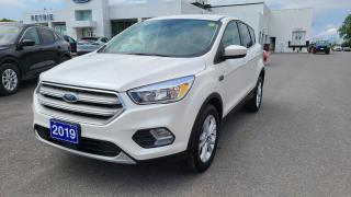Used 2019 Ford Escape SE 4WD for sale in Kingston, ON