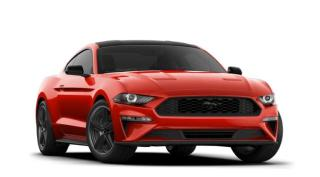 New 2021 Ford Mustang EcoBoost?? Fastback for sale in Brockville, ON