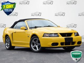 Used 2004 Ford Mustang Cobra RWD   6-SPEED MANUAL   4.6L V8   COBRA   CONVERTIBLE for sale in Waterloo, ON