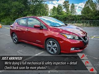Used 2019 Nissan Leaf SV for sale in Port Moody, BC