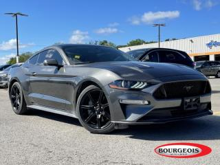 Used 2019 Ford Mustang GT 6 SPEED MANUAL for sale in Midland, ON