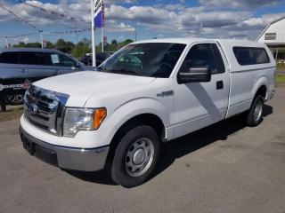 Used 2012 Ford F-150 XLT 8-ft. Bed 2WD No Accidents! 5.0L V-8! for sale in Dunnville, ON