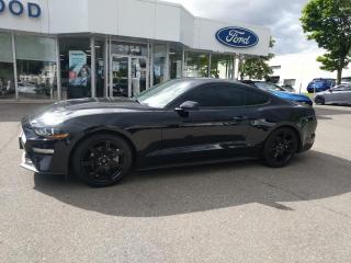 Used 2018 Ford Mustang EcoBoost for sale in Mississauga, ON