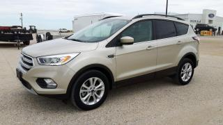Used 2017 Ford Escape SE for sale in Elie, MB