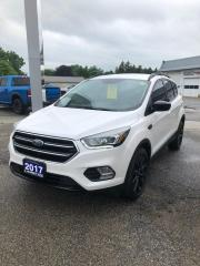 Used 2017 Ford Escape SE for sale in Petrolia, ON