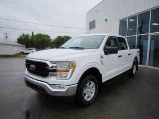 New 2021 Ford F-150 XLT for sale in Southey, SK