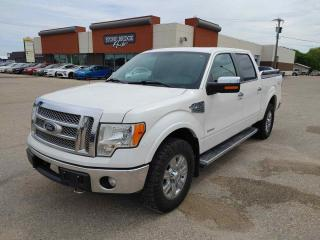 Used 2011 Ford F-150 PLATINUM for sale in Steinbach, MB