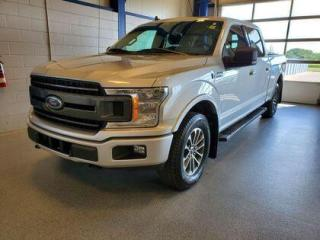 Used 2019 Ford F-150 XLT for sale in Moose Jaw, SK