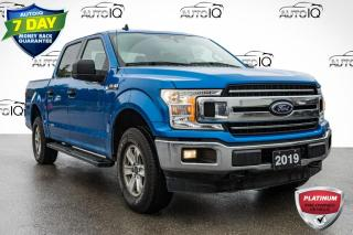 Used 2019 Ford F-150 XLT LOW MILEAGE CREW CAB | LOCAL TRADE for sale in Innisfil, ON