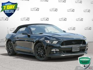 Used 2016 Ford Mustang GT Premium Black Appearance Pkg   Navigation   Stick Shift !! for sale in Oakville, ON