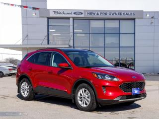 New 2021 Ford Escape SE 0% APR   ROOF   CO-PILOT   for sale in Winnipeg, MB