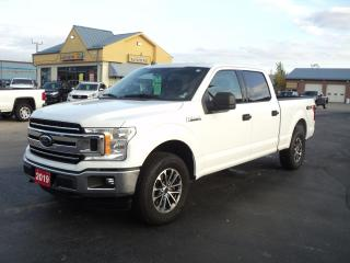 Used 2019 Ford F-150 XLT SuperCrew 4x4 5.0L 6.5ft Box BackUpCam for sale in Brantford, ON