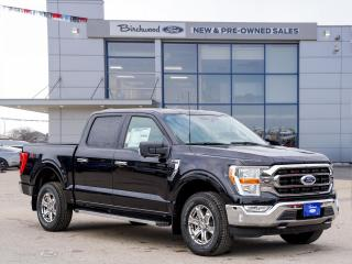 New 2021 Ford F-150 XLT 0.99% APR | 301A | V8 | XTR | TOW | for sale in Winnipeg, MB