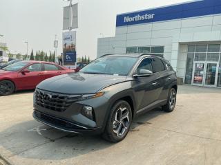 New 2022 Hyundai Tucson Hybrid HYBRID/LUXURY/LEATHER/SUNROOF/BLUELINK/ANDRIODAPPLEPLAY for sale in Edmonton, AB