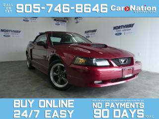 Used 2004 Ford Mustang GT   CONVERTIBLE   40TH ANN.   LEATHER   62 KM! for sale in Brantford, ON