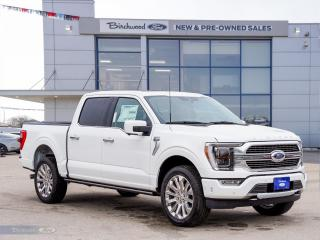 New 2021 Ford F-150 Limited ON ITS WAY | 0.99% APR | SYNC 4 | NAV | BLIS | for sale in Winnipeg, MB