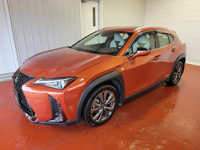 2020 Lexus UX UX 250h AWD