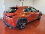 2020 Lexus UX UX 250h AWD Photo29