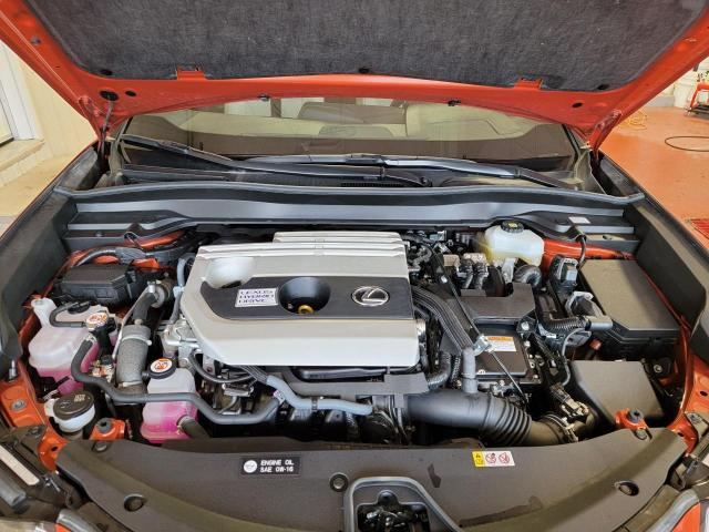 2020 Lexus UX UX 250h AWD Photo6