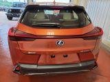 2020 Lexus UX UX 250h AWD Photo33