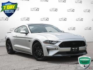 Used 2019 Ford Mustang GT Navigation | Active Valve Performance Exhaust | 19 Inch Rims Must See!! for sale in Oakville, ON