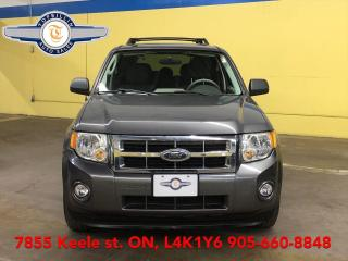 Used 2009 Ford Escape XLT 4WD V6 Only 63,000 Km for sale in Vaughan, ON