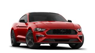 New 2021 Ford Mustang EcoBoost?? Premium Fastback for sale in Brockville, ON