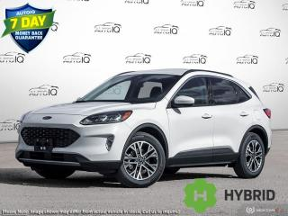New 2021 Ford Escape SEL Hybrid for sale in Kitchener, ON