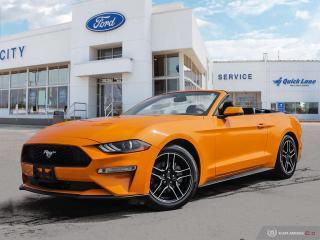 Used 2019 Ford Mustang EcoBoost Premium for sale in Winnipeg, MB