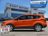2019 Ford Escape SEL 4WD  - Heated Seats -  Power Tailgate - $212 B/W