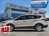 2019 Ford Escape SEL 4WD  - Sunroof - Activex Seats - $282 B/W