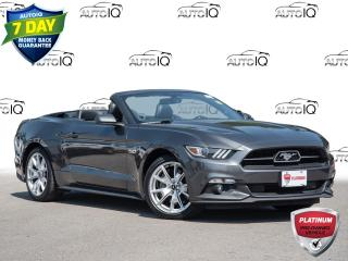 Used 2015 Ford Mustang GT Premium - 50th Anniversary Convertible for sale in Welland, ON