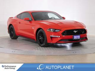 Used 2019 Ford Mustang GT, Navi, Back Up Cam, Power Seat, New Tires! for sale in Brampton, ON