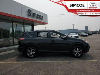 Used 2017 Toyota RAV4 XLE  - Sunroof -  Heated Seats for sale in Simcoe, ON