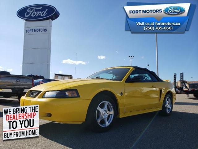2004 Ford Mustang 2 DOOR CONVERTIBLE  - Low Mileage