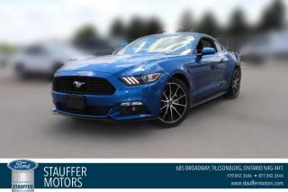 Used 2017 Ford Mustang EcoBoost for sale in Tillsonburg, ON