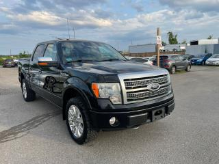 Used 2010 Ford F-150 Platinum Leather Sunroof for sale in Oakville, ON