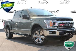 Used 2019 Ford F-150 XLT SUPER CLEAN ONE OWNER! CERTIFIED for sale in Hamilton, ON
