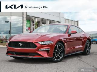 Used 2020 Ford Mustang EcoBoost 315HP!! ONLY 6400KM!!! for sale in Mississauga, ON
