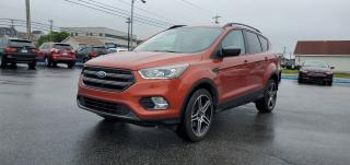 Used 2019 Ford Escape SEL for sale in Mount Pearl, NL