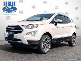 Used 2020 Ford EcoSport Titanium for sale in Harriston, ON