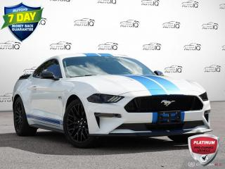 Used 2019 Ford Mustang GT Premium | Borla Exhaust | Fully Loaded | Must See!! for sale in Oakville, ON