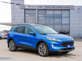 New 2021 Ford Escape SEL 0% APR   301A   ROOF   TECH PKG   CO-PILOT   for sale in Winnipeg, MB